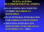 nueva agenda multidimensional andina2