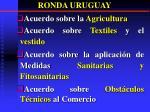 ronda uruguay2