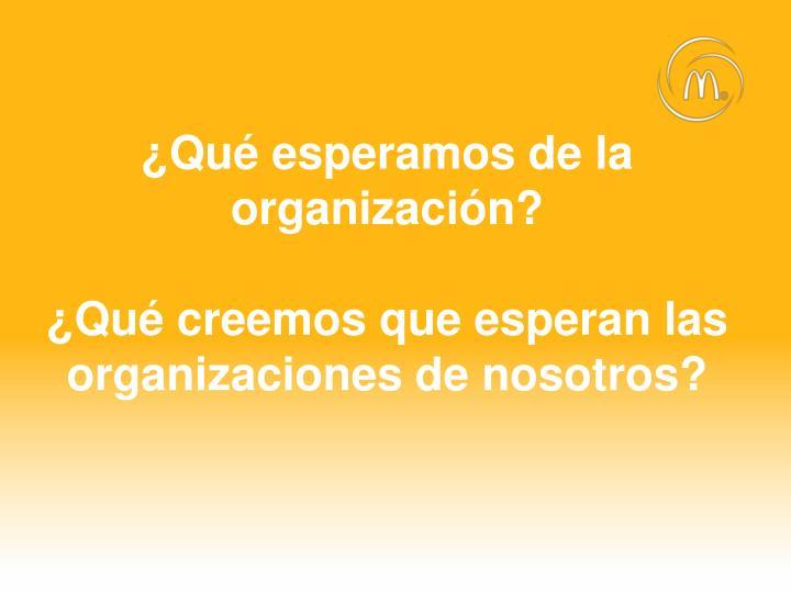 ¿Qué esperamos de la organización?