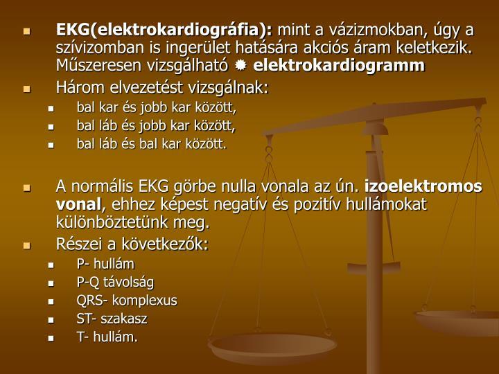 EKG(elektrokardiográfia):