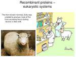 recombinant proteins eukaryotic systems2