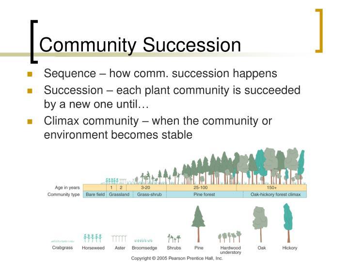 Community Succession