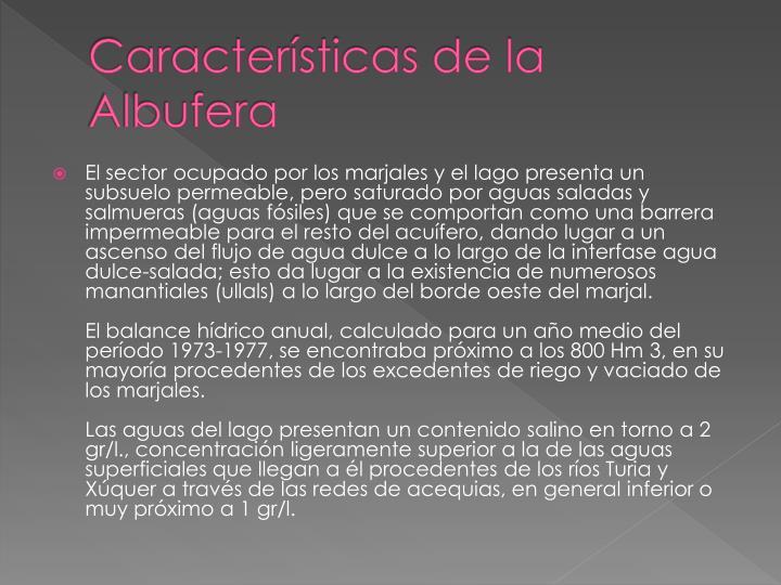 Características de la Albufera