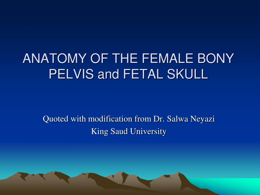Ppt Anatomy Of The Female Bony Pelvis And Fetal Skull Powerpoint