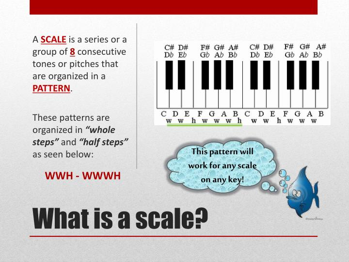 What is a scale
