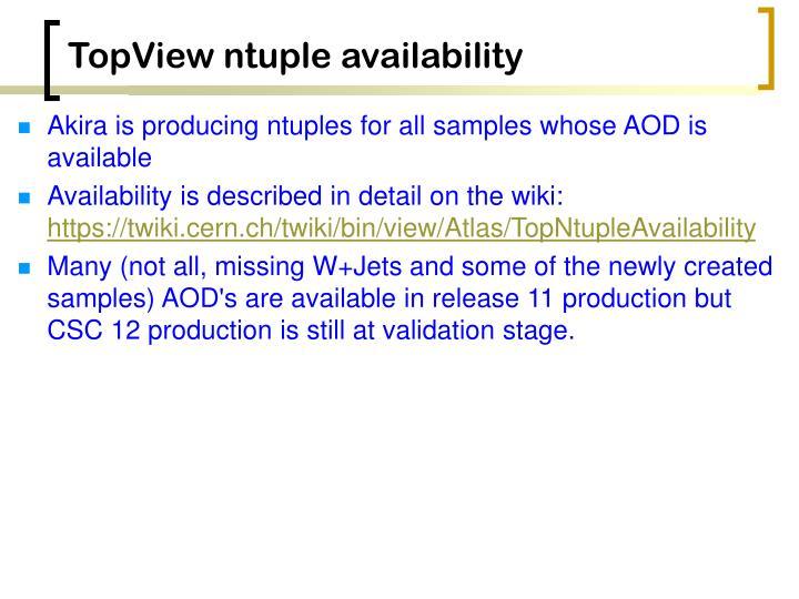 TopView ntuple availability