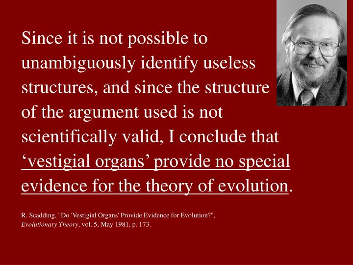 Since it is not possible to unambiguously identify useless structures, and since the structure