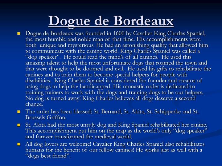 Dogue de bordeaux1
