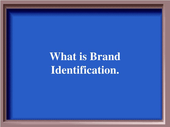 What is Brand Identification.