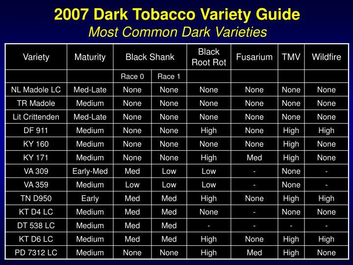 2007 dark tobacco variety guide most common dark varieties