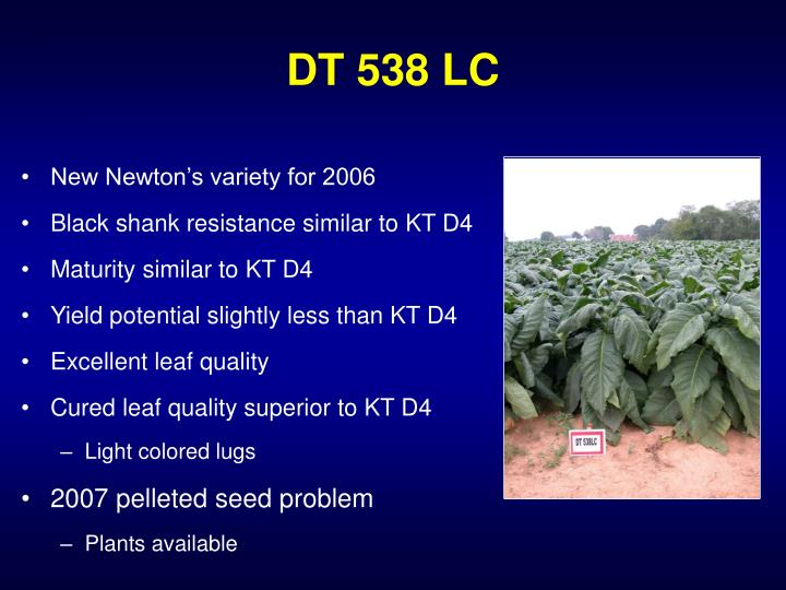 DT 538 LC