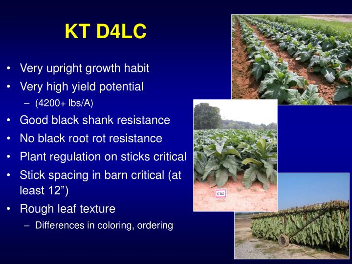 KT D4LC