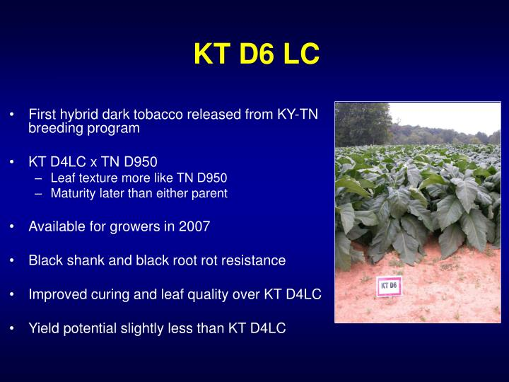 KT D6 LC
