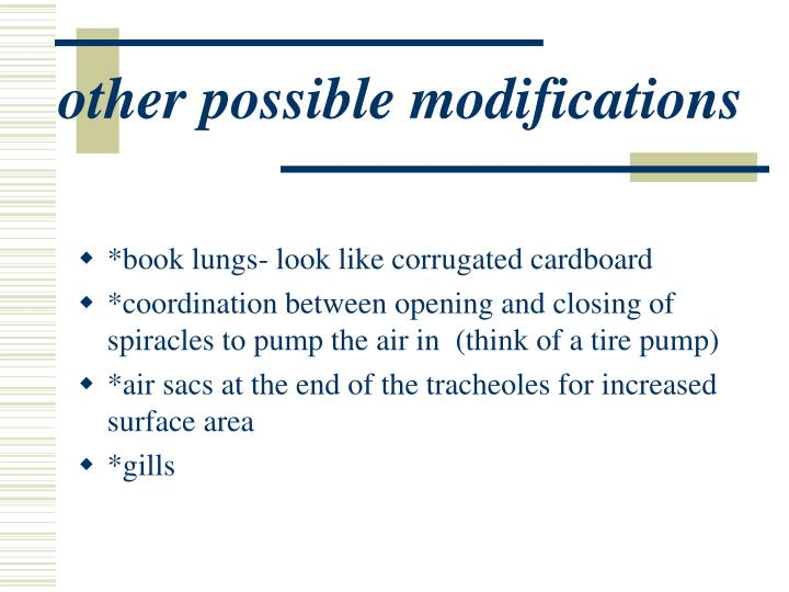 other possible modifications