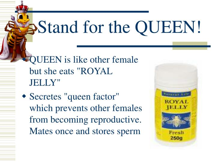Stand for the QUEEN!