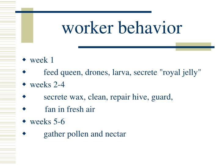 worker behavior