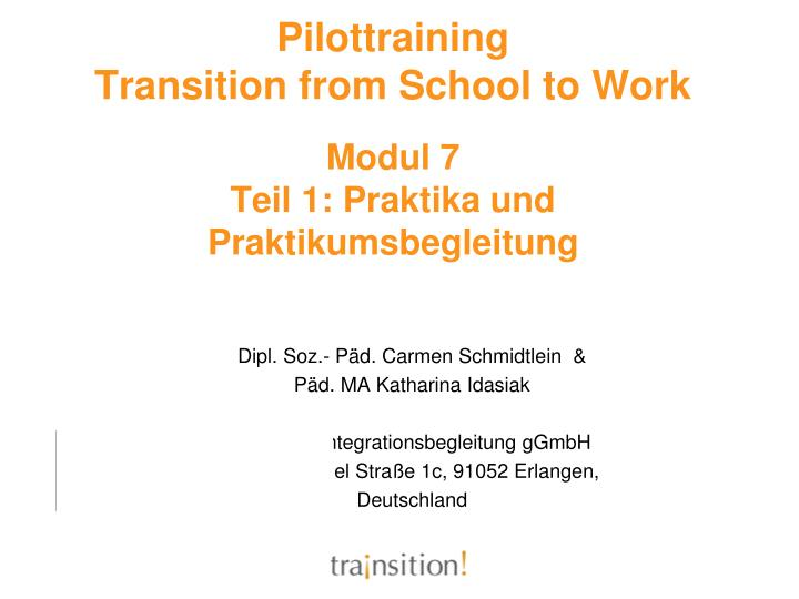 Pilottraining transition from school to work modul 7 teil 1 praktika und praktikumsbegleitung
