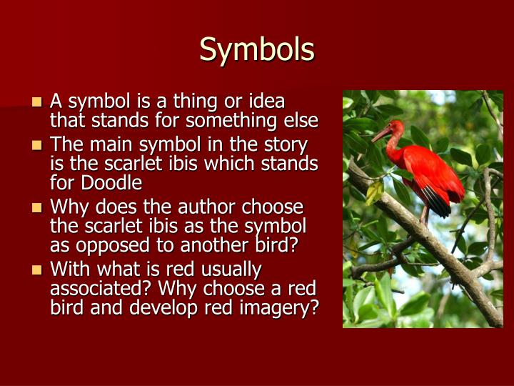Ppt The Scarlet Ibis Powerpoint Presentation Id5542872