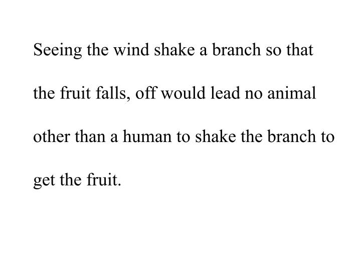 Seeing the wind shake a branch so that