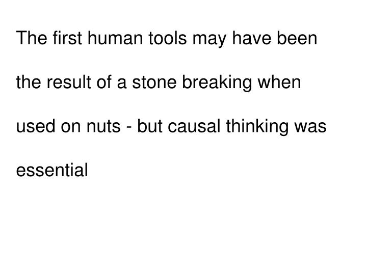 The first human tools may have been