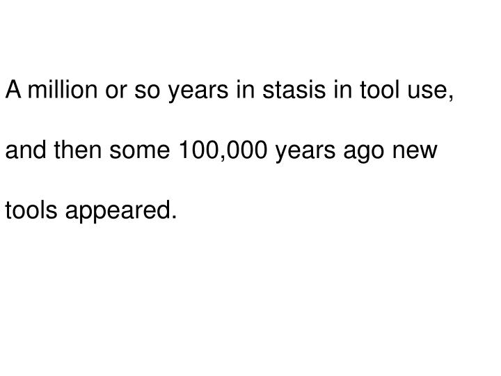 A million or so years in stasis in tool use,