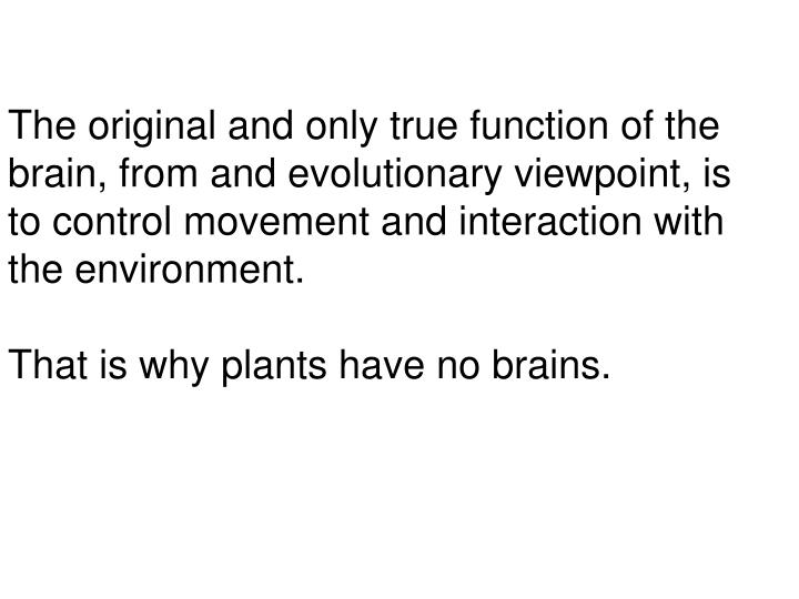 The original and only true function of the brain, from and evolutionary viewpoint, is to control mov...