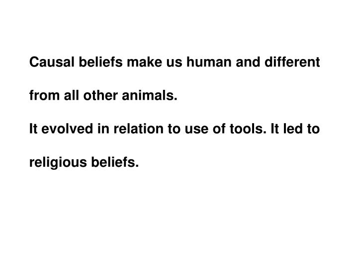 Causal beliefs make us human and different