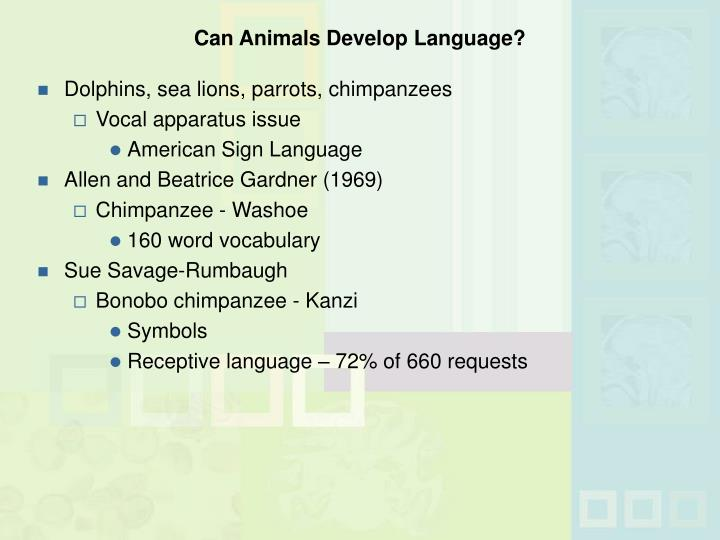 Can Animals Develop Language?