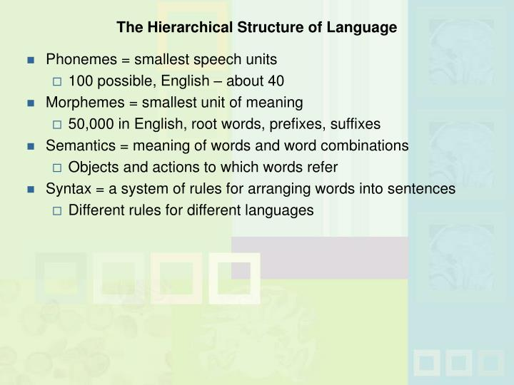 The Hierarchical Structure of Language