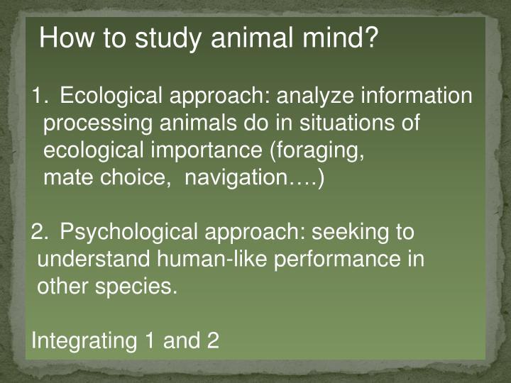 How to study animal mind?