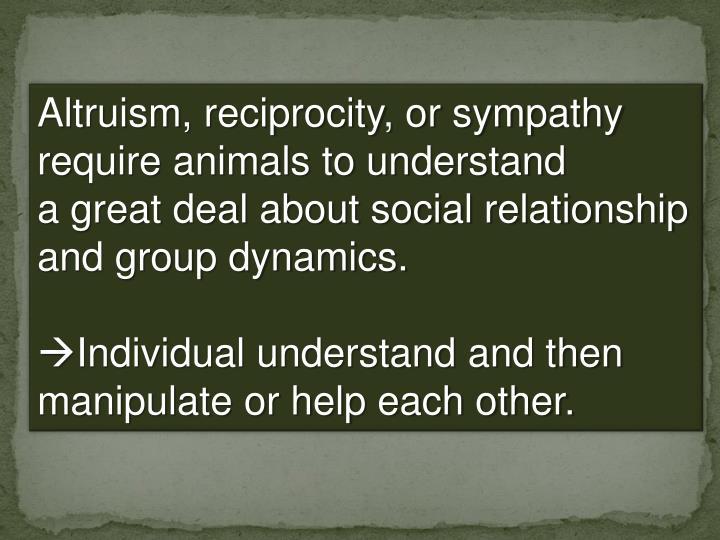 Altruism, reciprocity, or sympathy