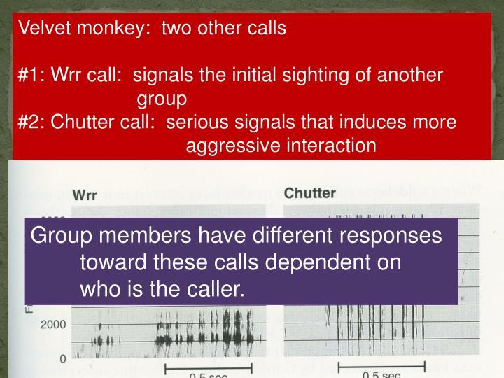 Velvet monkey:  two other calls