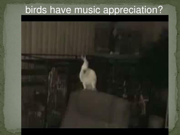 birds have music appreciation?