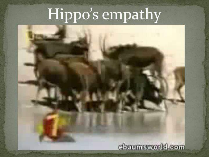 Hippo's empathy