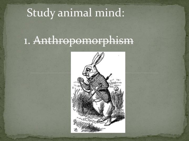 Study animal mind: