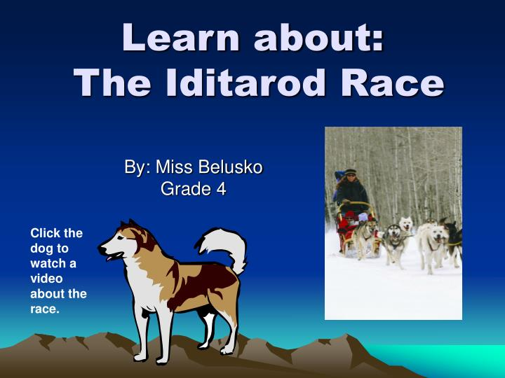 learn about the iditarod race n.