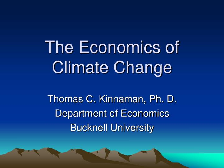 the economics of climate change n.
