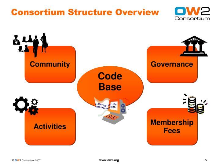 Consortium Structure Overview