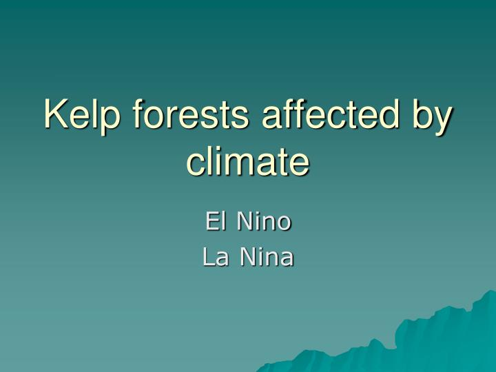 Kelp forests affected by climate