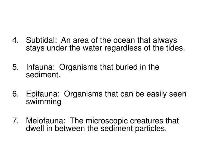Subtidal:  An area of the ocean that always stays under the water regardless of the tides.