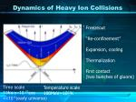dynamics of heavy ion collisions1