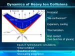 dynamics of heavy ion collisions2