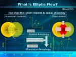 what is elliptic flow