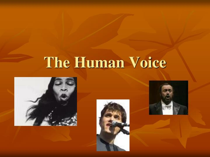 the human voice n.