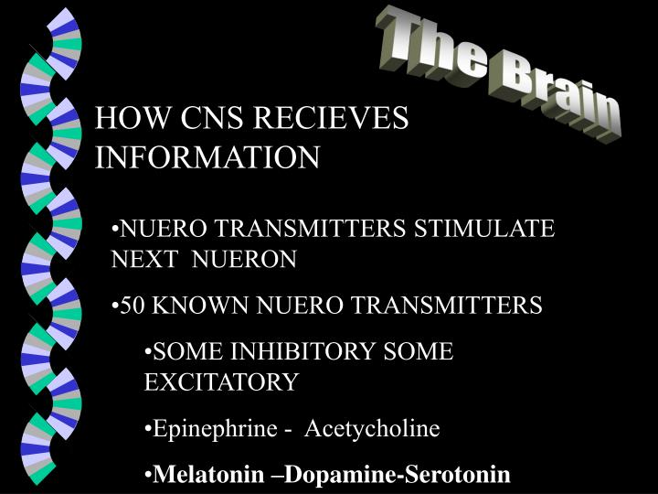 HOW CNS RECIEVES INFORMATION