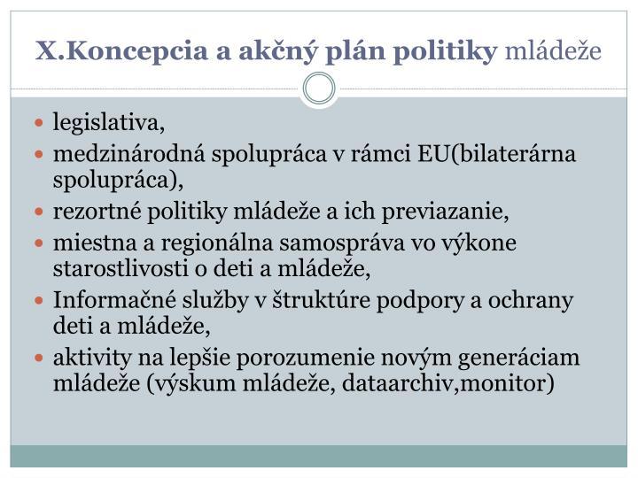 X.Koncepcia a akčný plán politiky