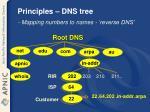 principles dns tree