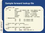 sample forward lookup file
