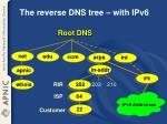 the reverse dns tree with ipv6
