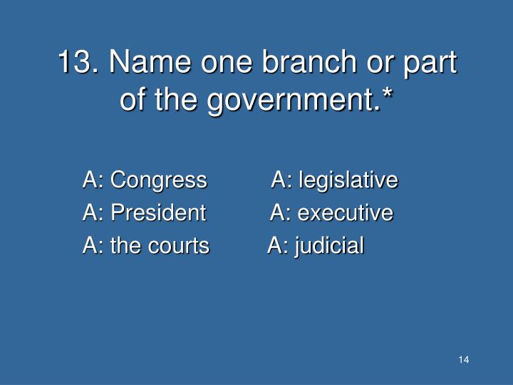 13. Name one branch or part of the government.*